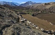 Správa MO USA o bezpečnostnej situácii v Afganistane