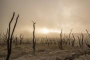 Správa OSN o klimatických zmenách a možnostiach redukcie nerovnosti