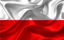 Národná bezpečnostná stratégia Poľskej republiky /2020/