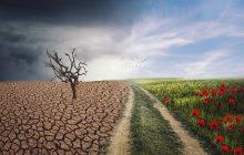 Poznámky k naliehavosti globálnych opatrení v oblasti zmeny podnebia – John Kerry